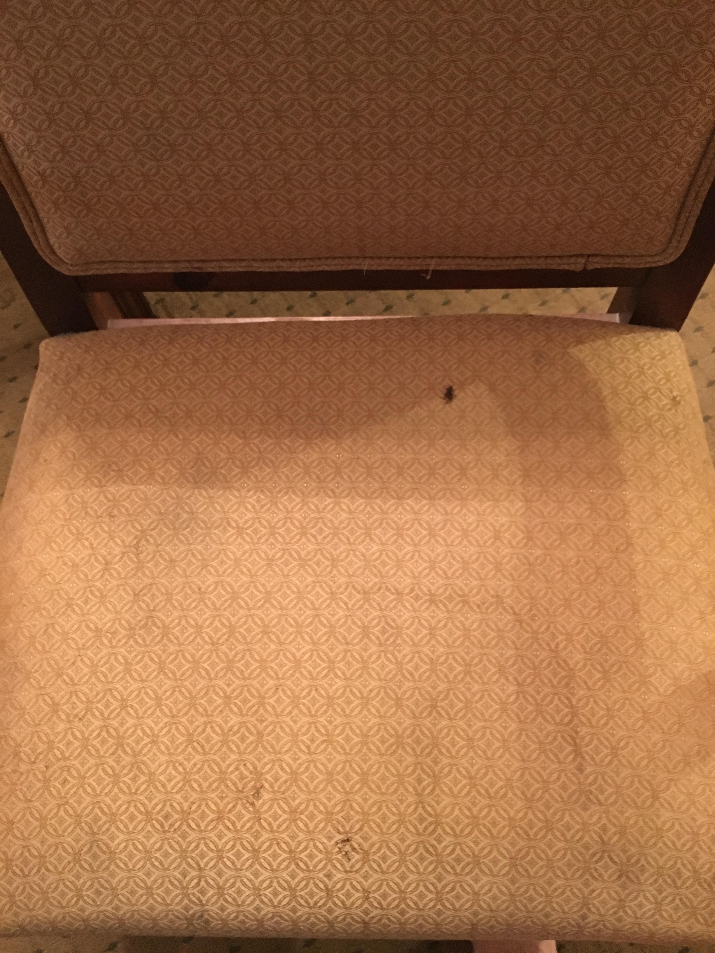 Brown splatters above bathroom mirror
