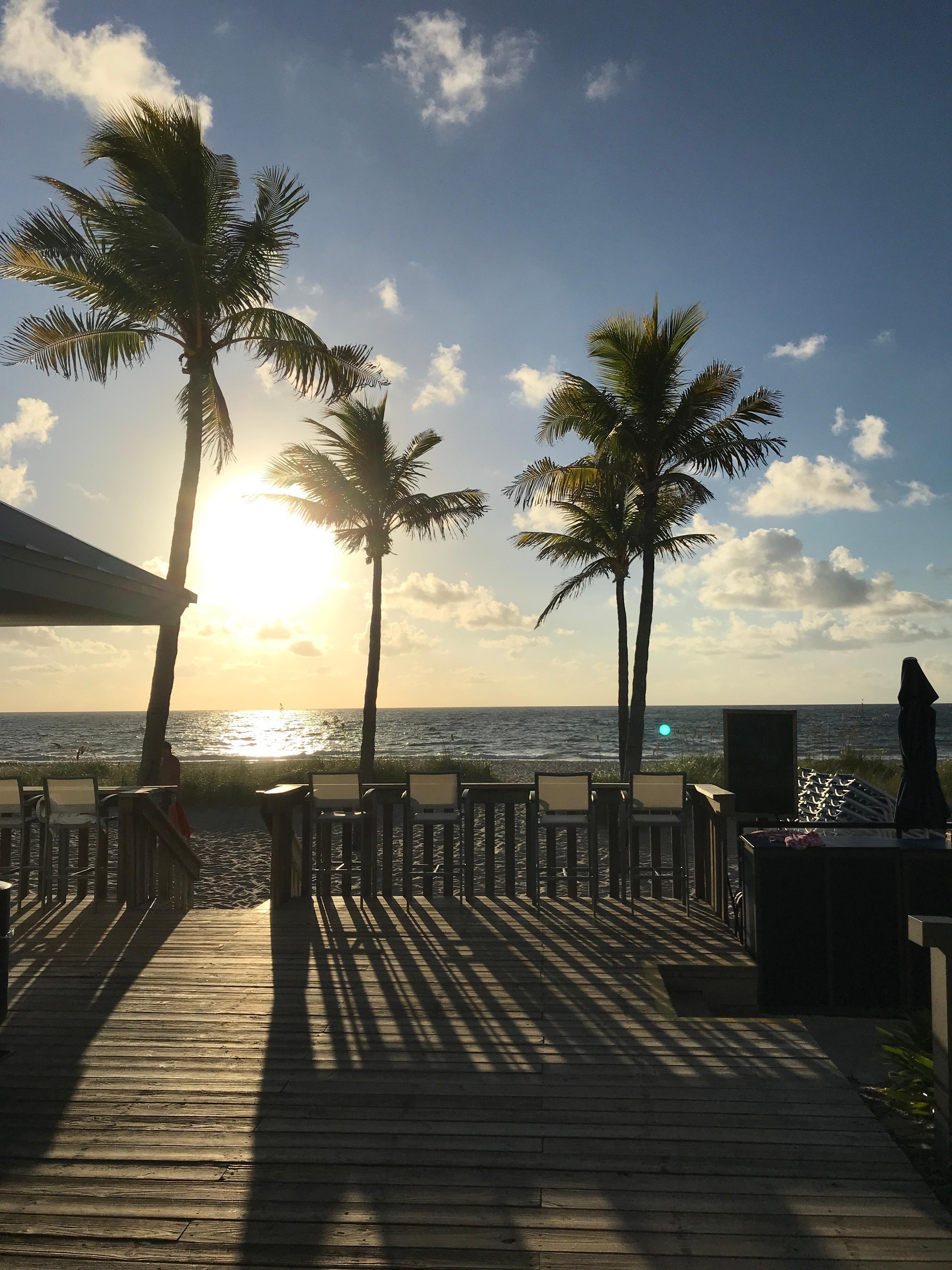 Plunge Beach Hotel In Fort Lauderdale