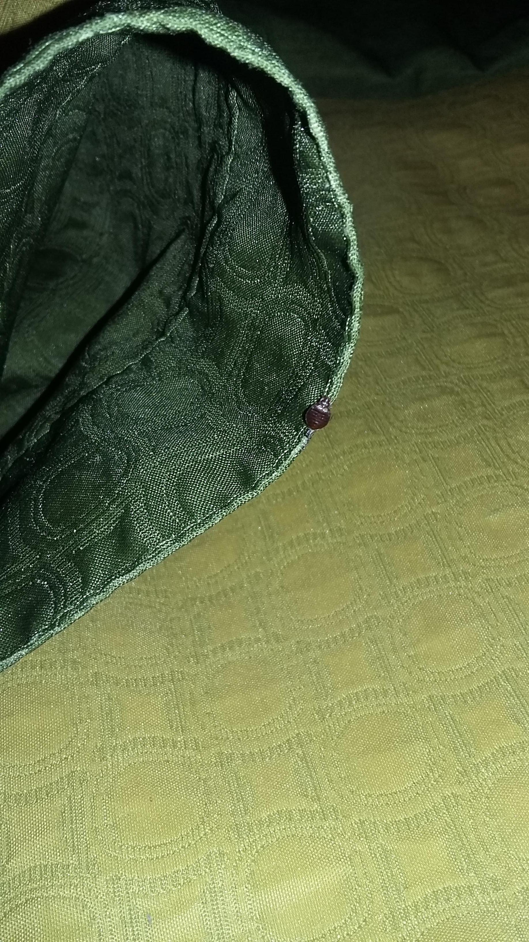 tiny bug #2