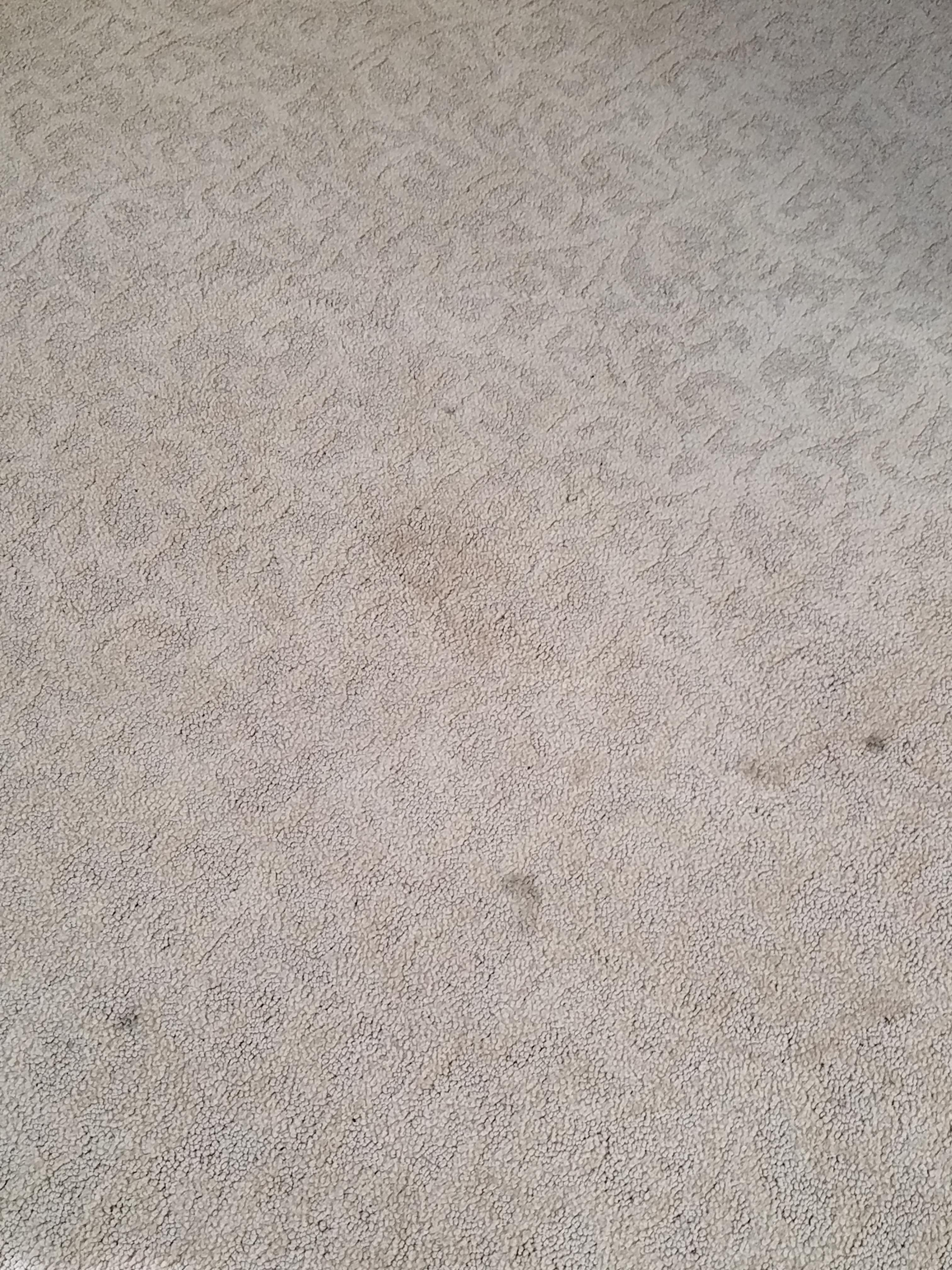 Spots and dirt on carpet