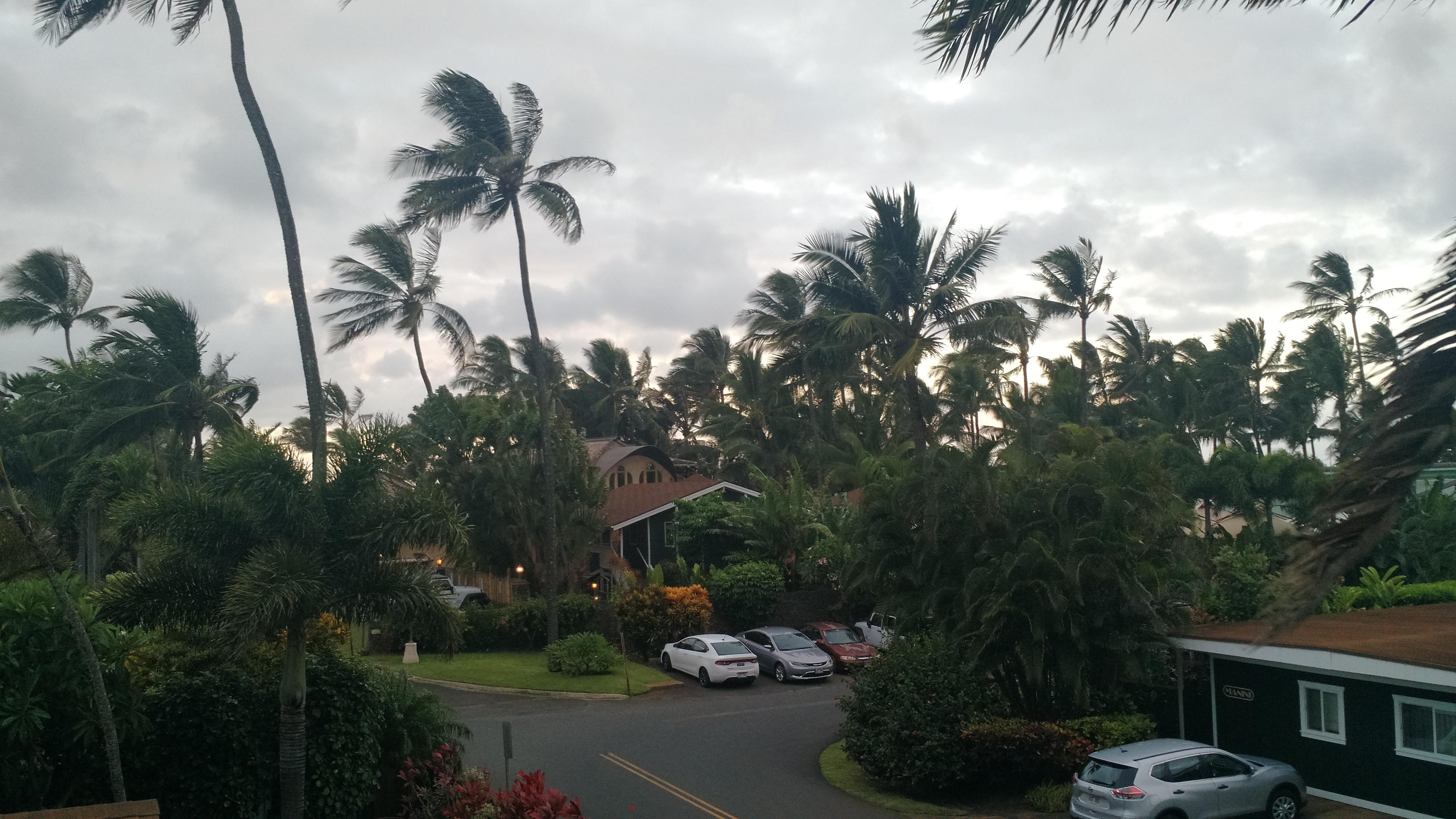 View from Orchid's lanai.