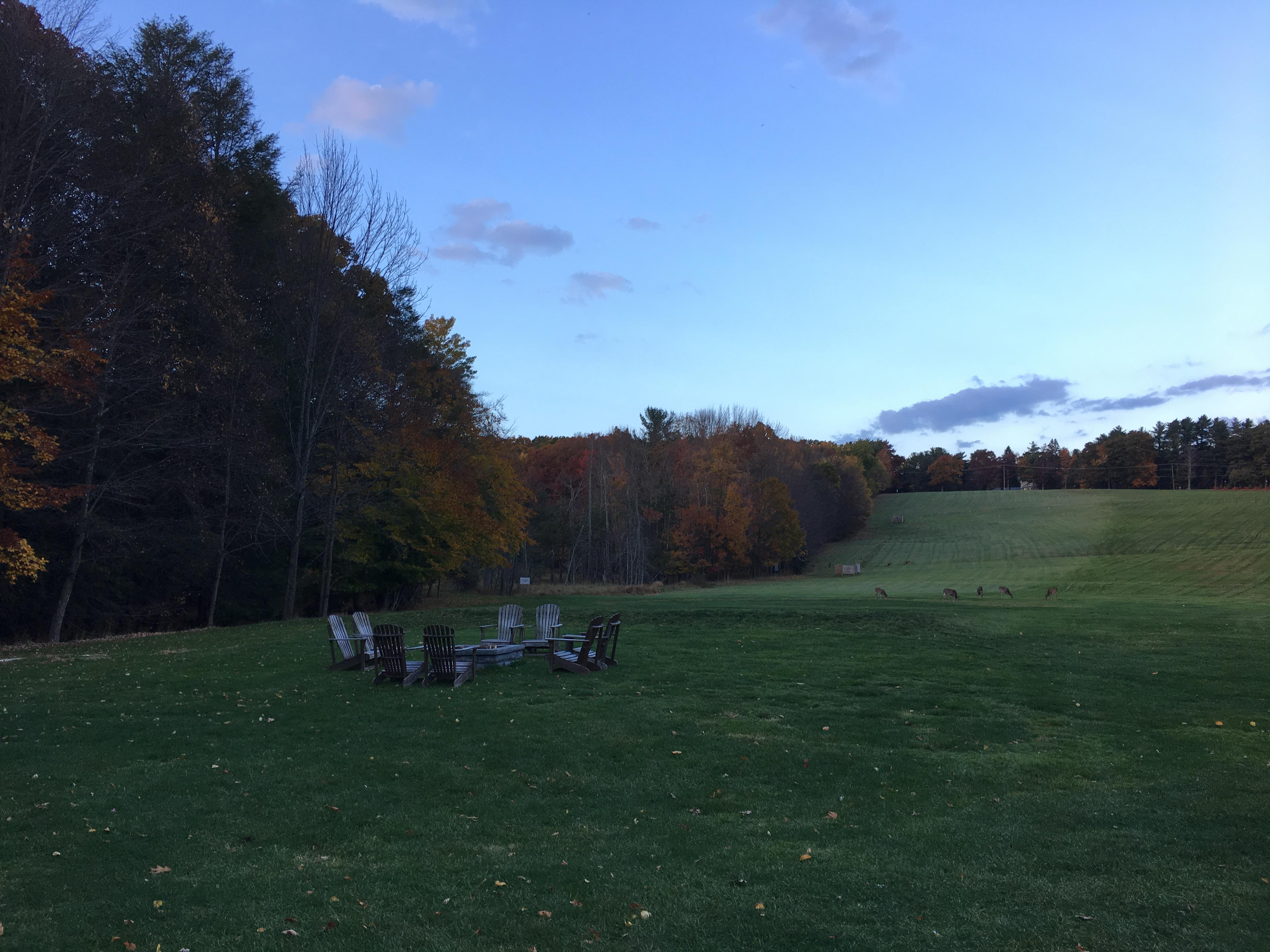 Fire Pit and Driving Range