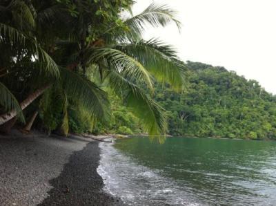 The beach at Playa Nicuesa Rainforest Lodge