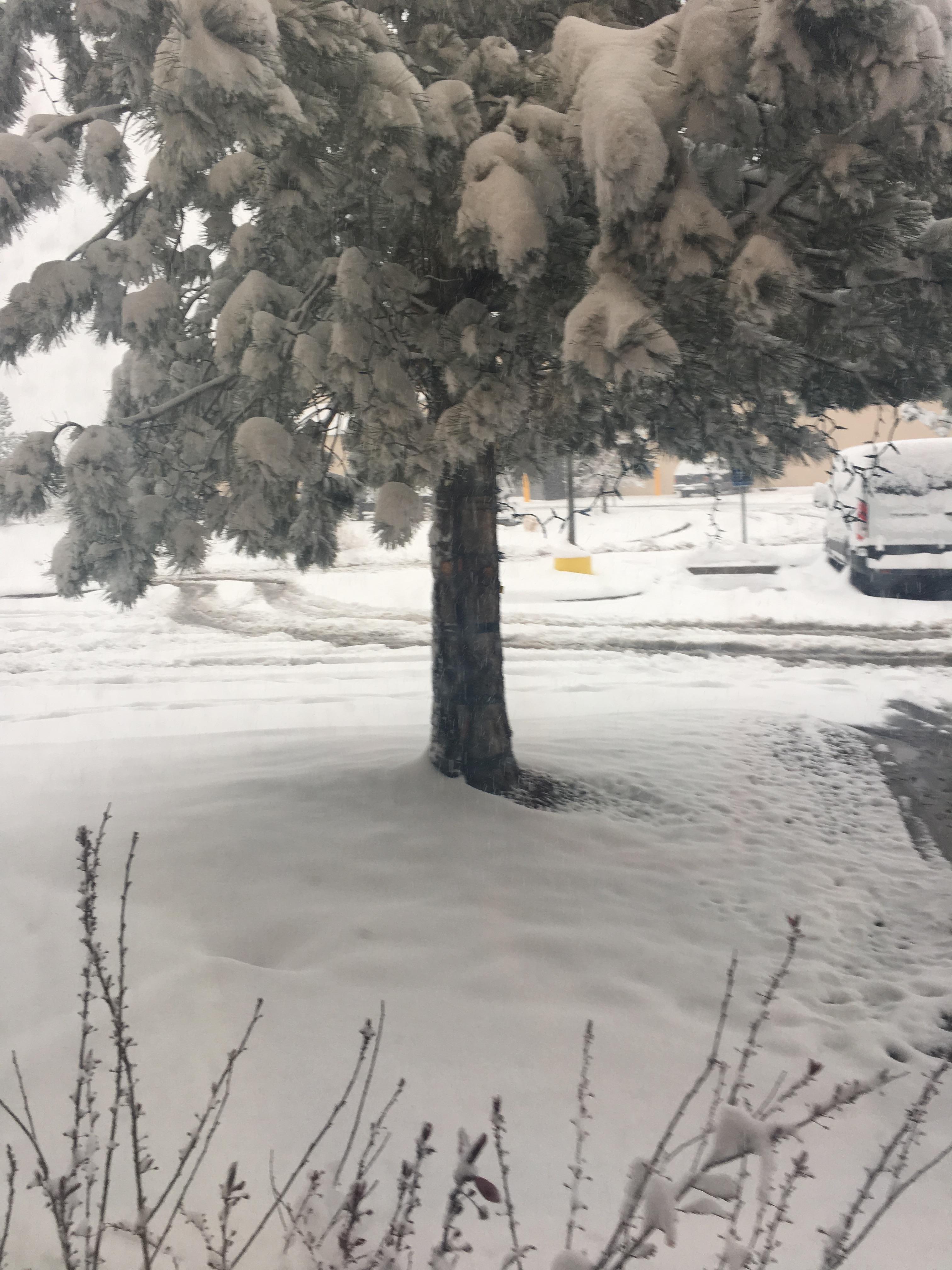 Light snow in Denver