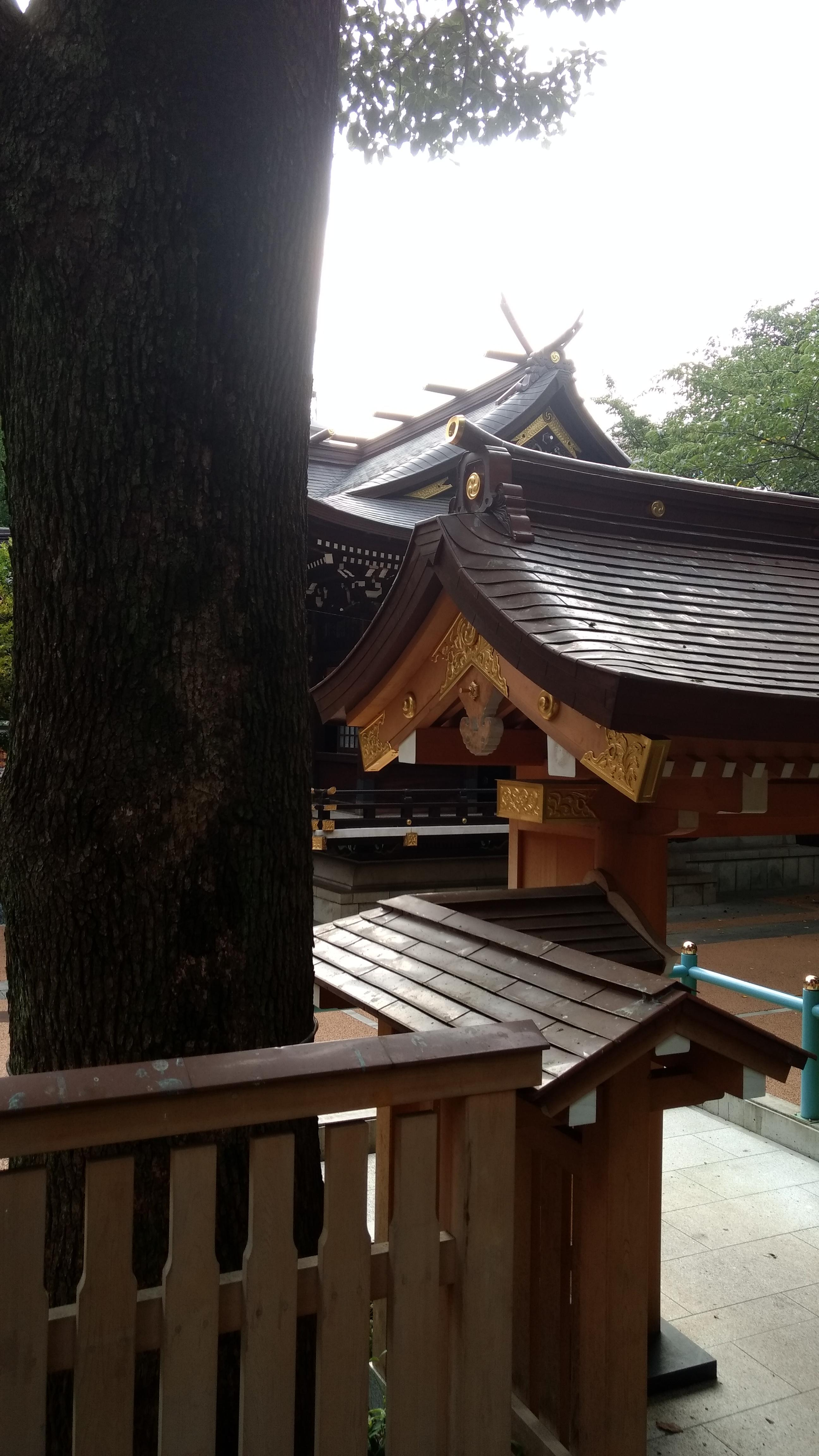 Kumano Shrine in Chuo Park