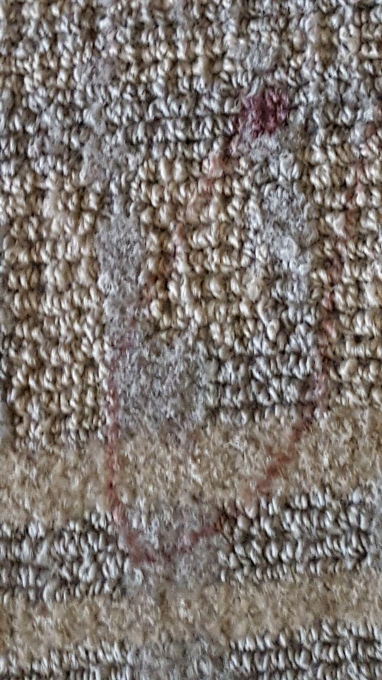 Dirty carpet with blood spots