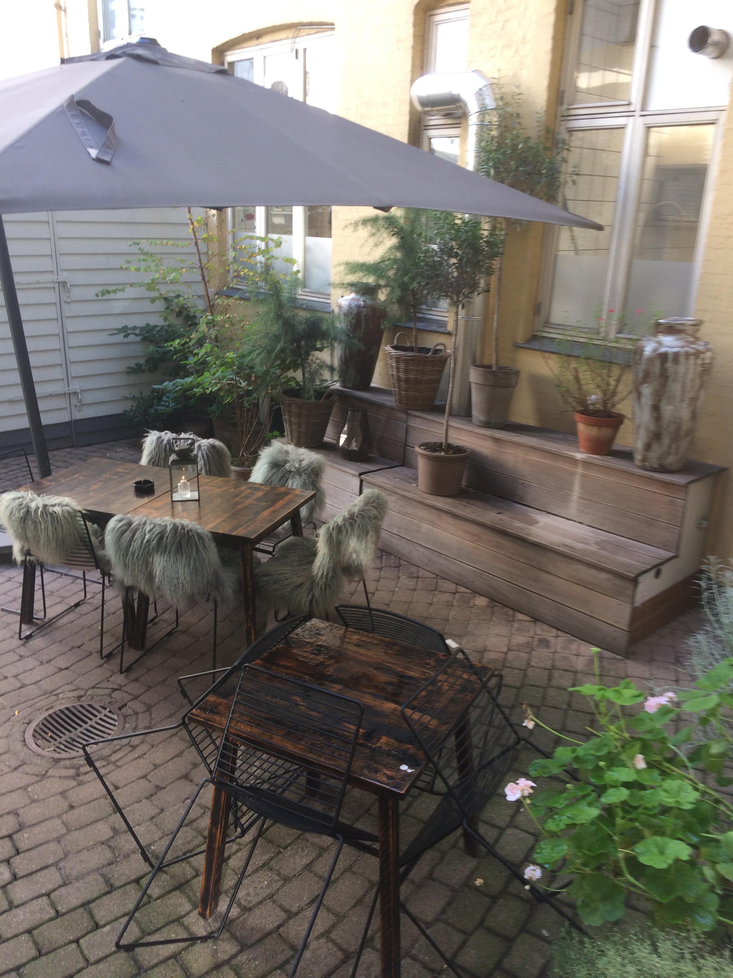 Outside terrace ( Late septembet)