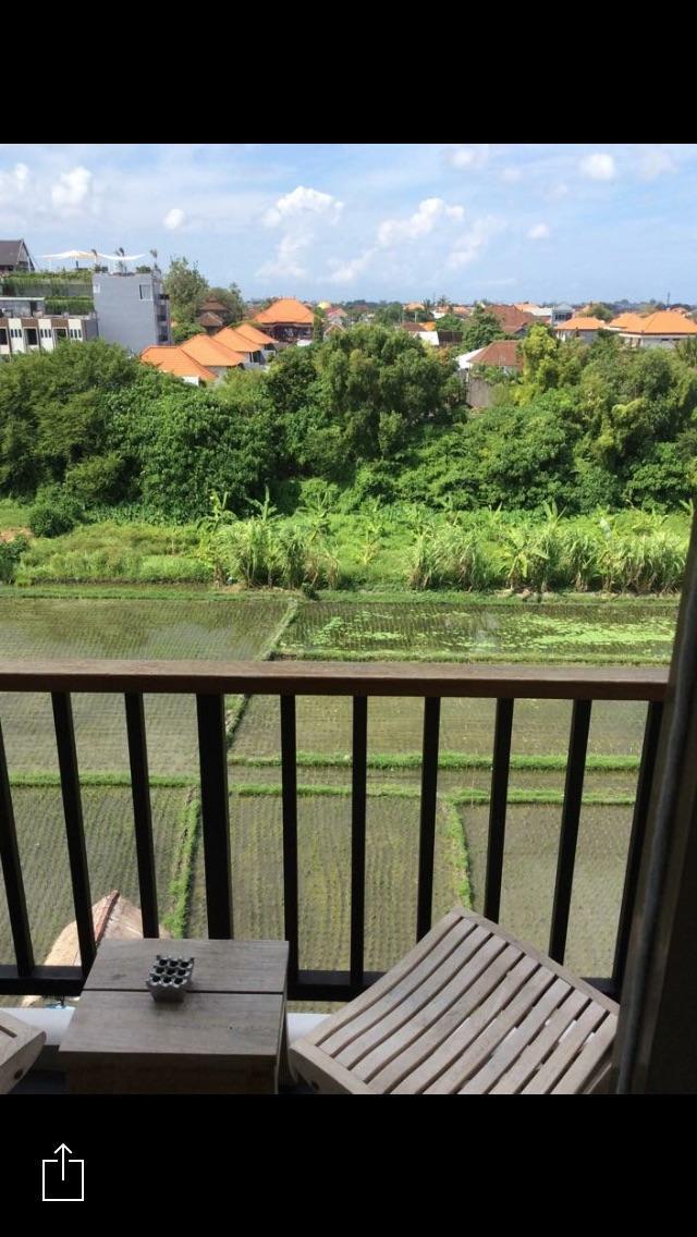 Rice paddy view room