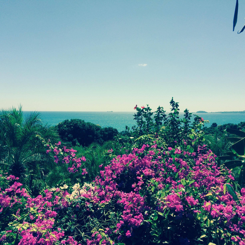 Ausblick vom Bungalow