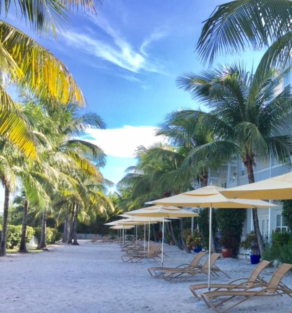 Tropical vacation paradise.
