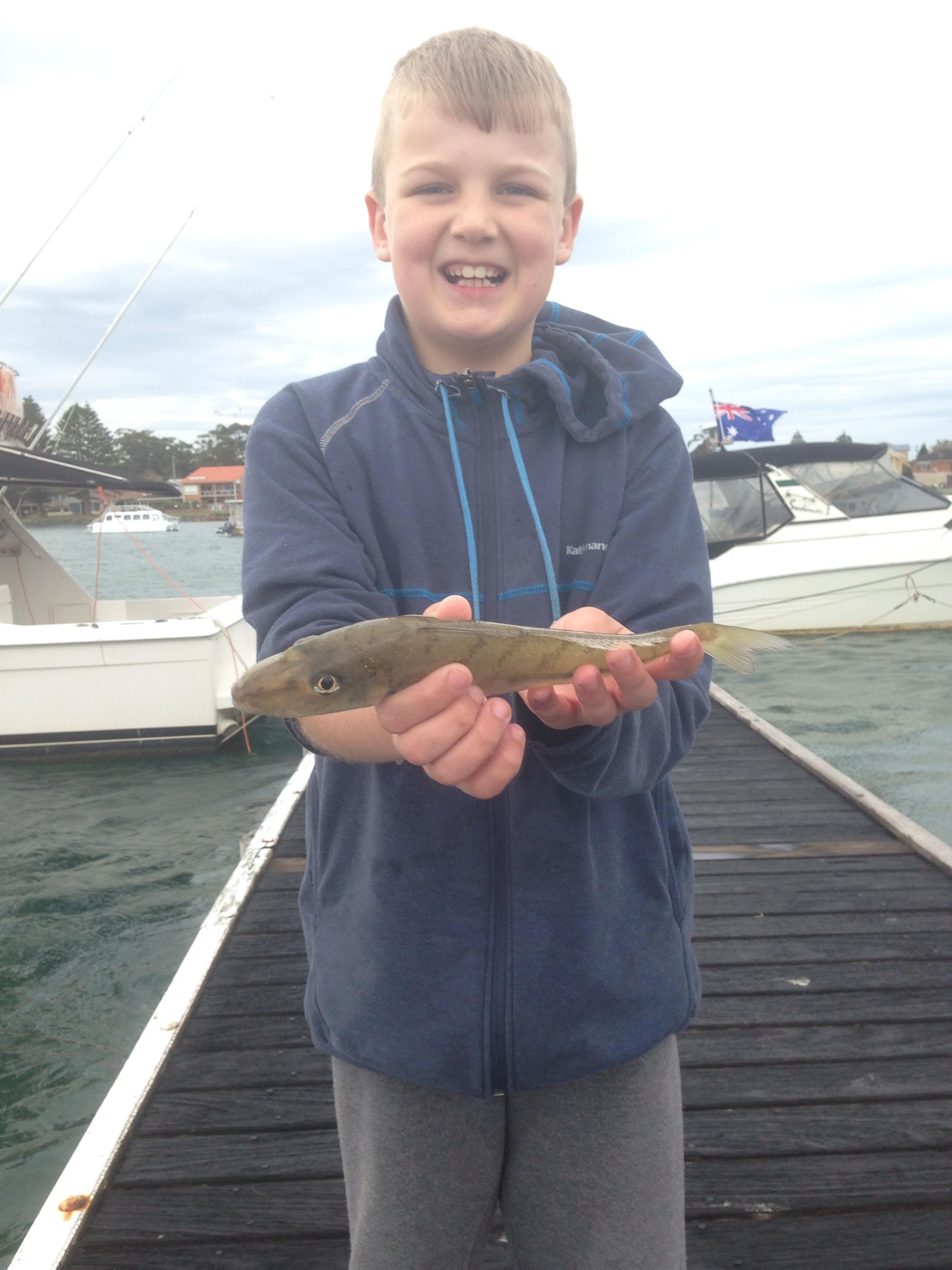 Whiting in the bay